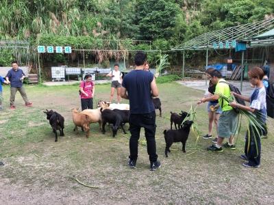 親子好去處2020-假日農場-親子農莊-香港財經時報HKBT-香港財經時報-HKBT