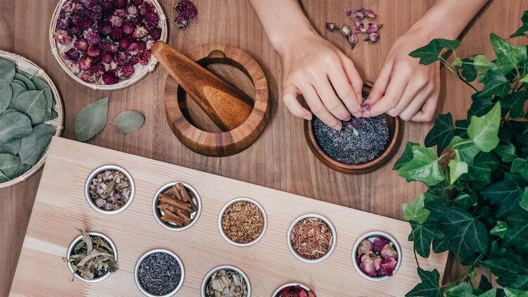 會所「CLUB HENLEY」引入城市農莊概念,讓住客於果園、菜園和茶園體驗城市農耕樂趣。